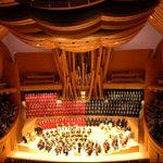 walt-disney-concert-hall6